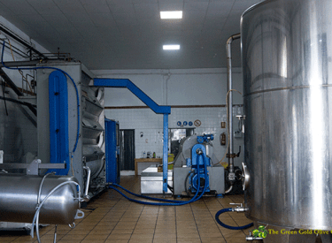 Indoor Olive Mill Premises